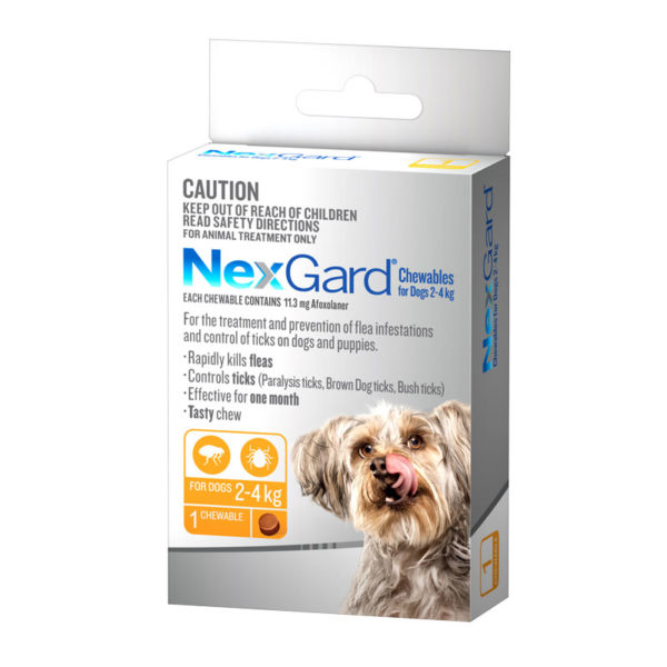 NexGard Orange Chew for Small Dogs (2-4kg) - Single 1