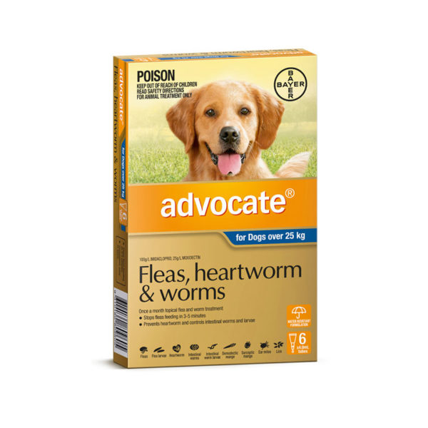 Advocate Blue Spot-On for Very Large Dogs - 6 Pack 1