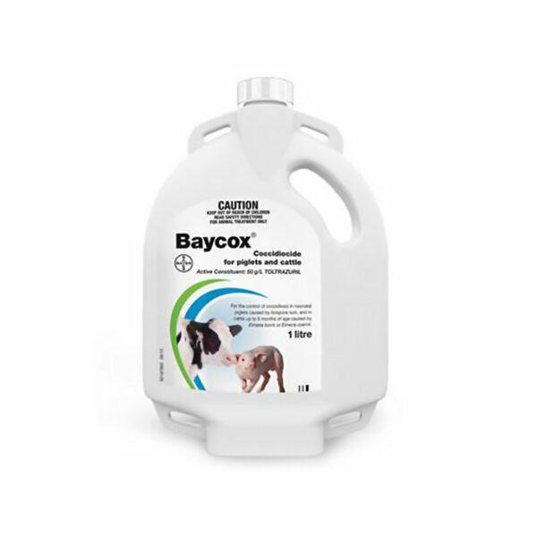 BAYC C 03