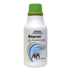 Baycox Piglet and Cattle 250ml 1