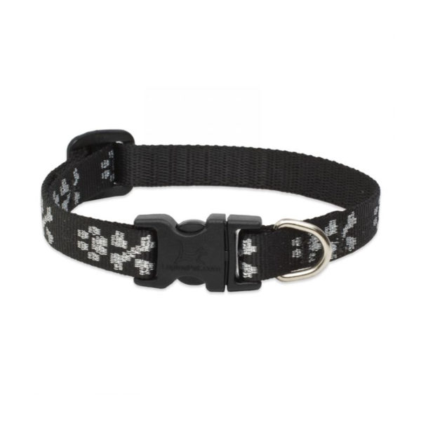 "Lupine Bling Bonz Small Dog Collar 10-16"" 1"