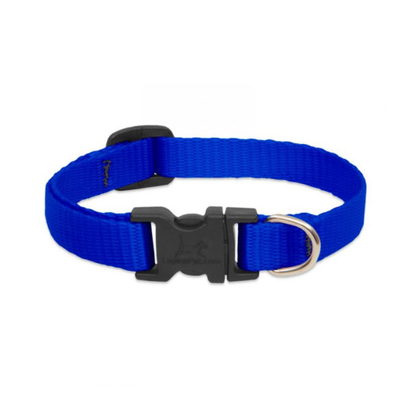 "Lupine Blue Small Dog Collar 8-12"" 1"
