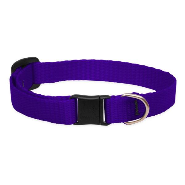 Lupine Purple Safety Cat Collar 1