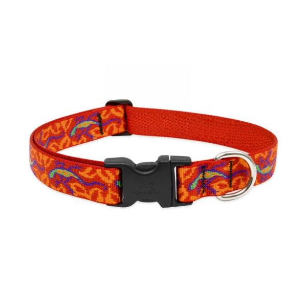 "Lupine Go Go Gecko Large Dog Collar 12-20"" 1"