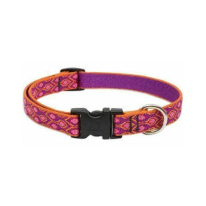 "Lupine Alpen Glow Medium Dog Collar 13-22"" 1"