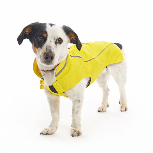 BUSTER Classic Dog Raincoat Lemon XX-Small 2
