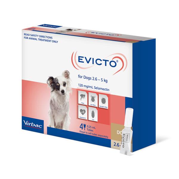 EVIC 03