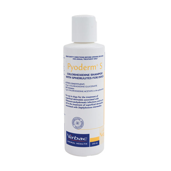 Pyoderm S Medicated Shampoo for Dogs 1