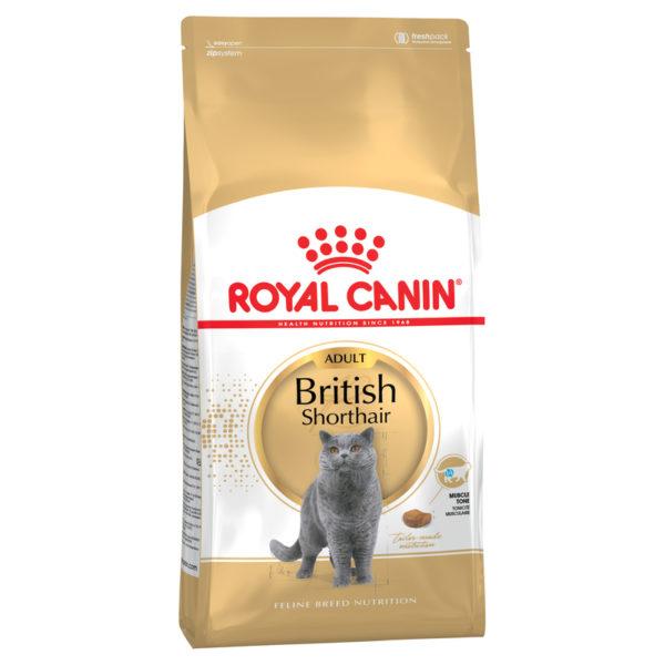 Royal Canin Feline Breed Nutrition British Shorthair Adult 4kg 1