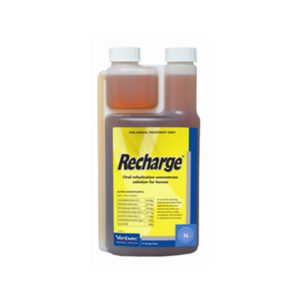 Recharge for Horses 1L 1