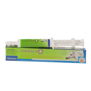 Strategy-T Paste 35ml Syringe 1